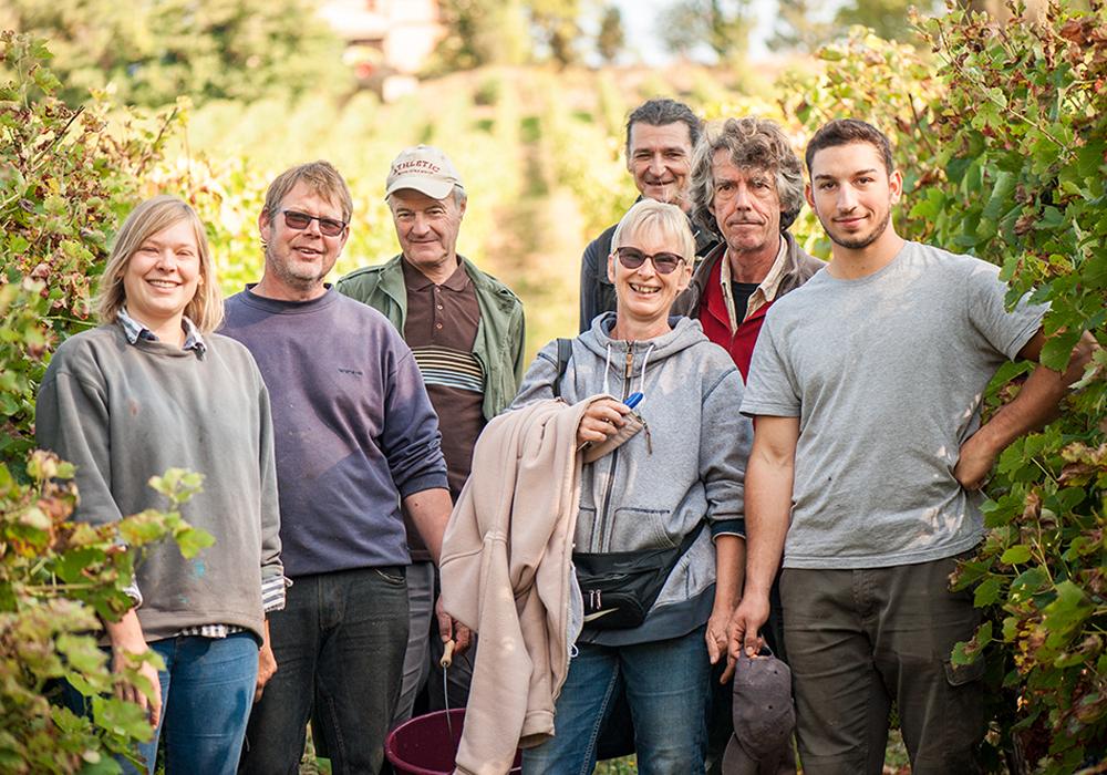 L'équipe du Domaine de Lastronques dans les vignes